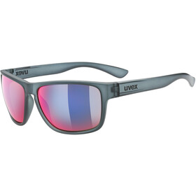 UVEX LGL 36 Colorivision Lunettes, grey/daily plasma